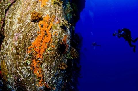 Bí ẩn ngàn năm về sự diệu kỳ của Đảo Phục Sinh Rapa Nui - 13