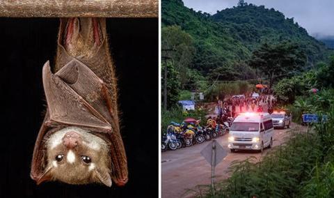 Cứu đội bóng Thái Lan: Mối đe dọa lớn đang ở ngay trong hang - 1