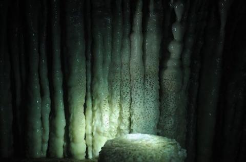 Ảnh: Vẻ đẹp tráng lệ của động Thiên Đường với thạch nhũ hàng trăm triệu năm tuổi - 3