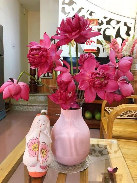 Cuối mùa sen mua hoa về cắm, chị Hoan tận dung làm món chả cánh sen hấp dẫn (Ảnh FBNV)