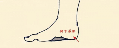 Gót chân mềm và đầy đặn