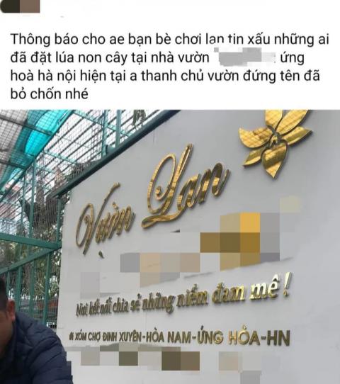 Hoa lan đột biến: Xôn xao tin chủ vườn lan ở Hà Nội ôm 200 tỷ đồng bỏ trốn - Ảnh 1.