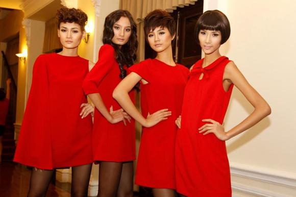 Viet Nam Next Top Model khởi động cuộc thi Top Model Online