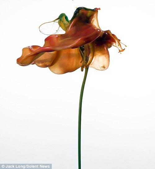 """""""Hoa nở"""" tuyệt đẹp từ sơn màu"""