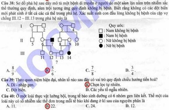 Đáp án đề thi cao đẳng môn Sinh khối B năm 2012