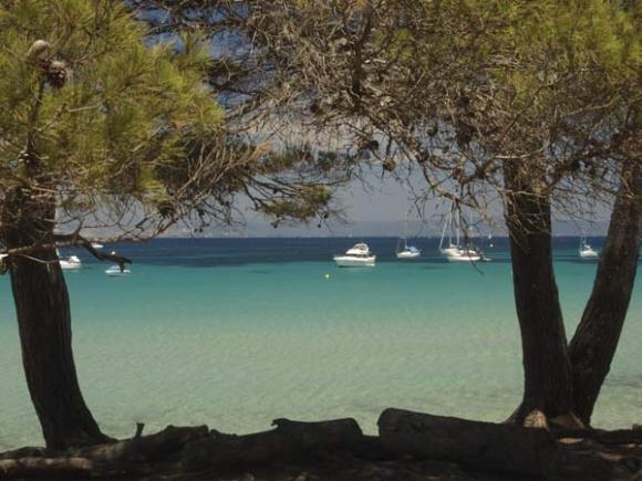 Ngắm biển ngà trên đảo Porquerolles