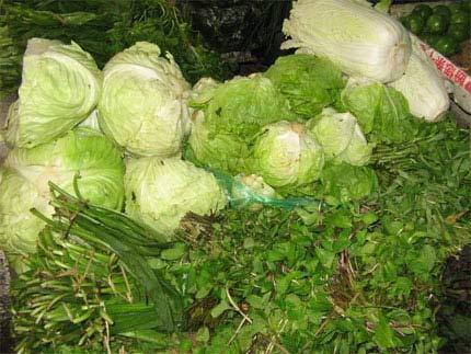 Nghi tử vong sau khi ăn bắp cải trái mùa