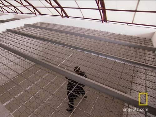 Nhà tù giam giữ tội phạm ăn thịt người