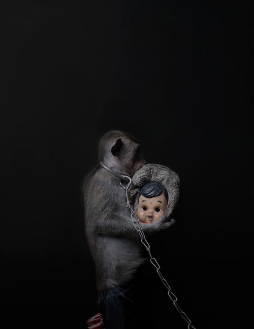 Khỉ bị ép 'mua vui': ám ảnh và đau lòng
