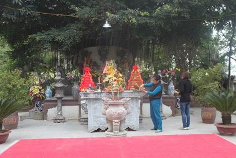 """Sự thật ngỡ ngàng về """"thần xà"""" hiển linh ở Việt Nam"""