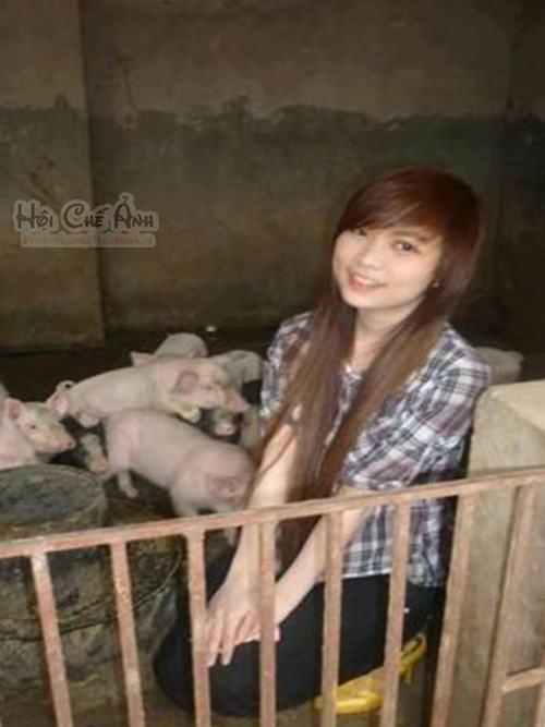 Ảnh cười bể bụng (P25): Những hình ảnh 'cực độc' ở Việt Nam