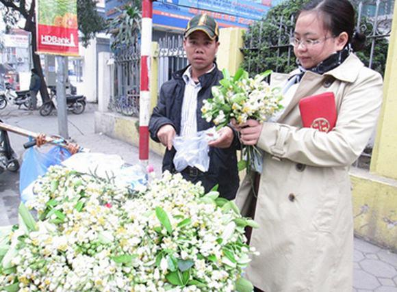 Lạ lùng thú chơi hoa bưởi cả cân của người Hà Nội