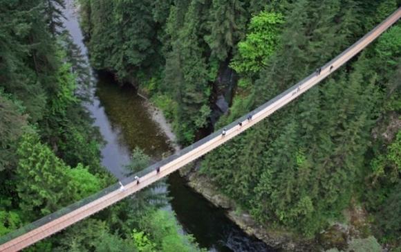Cầu Capilano Suspension nằm ở độ cao 70m ngay trên con sông Capolano, Vancouver, Canada. Nhìn từ trên cao, cầu Capilano Suspension như một đường dài thẳng tắp, không khuyết điểm.
