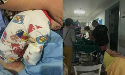 Thò tay vào chuồng hổ, bé 2 tuổi bị cắn đứt cánh tay
