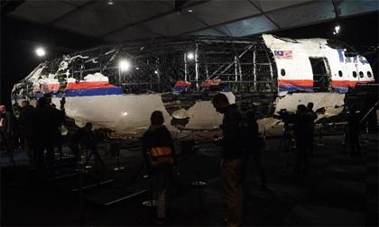Nhiều hành khách trên MH17 có thể vẫn sống khi máy bay rơi