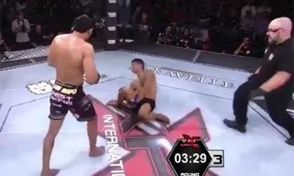 Tuyệt chiêu MMA: Đá phát... ngất luôn