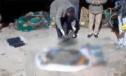 Sốc: Thi thể bé gái tị nạn Syria mắc vào lưới ngư dân