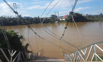 Tin tức mới nhất về vụ sập cầu treo ở Đồng Nai