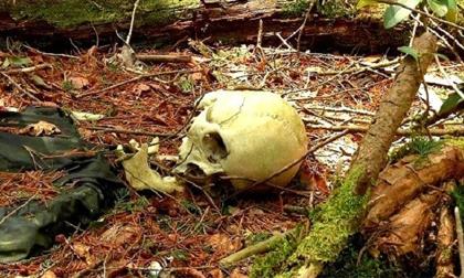 Mùi hôi thối nồng nặc tố cáo kẻ sát nhân trong rừng
