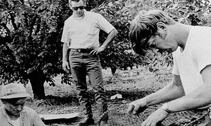 Thi thể người đàn đồng tính trong vườn đào hé lộ vụ giết người hàng loạt