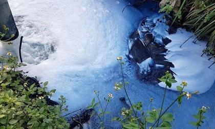 """Người dân """"kêu trời"""" vì ô nhiễm bên dòng sông Bắc Hưng Hải"""