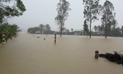4 người chết, 3 người bị thương do mưa lũ ở Bình Định, Quảng Ngãi