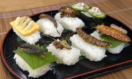 Những món ăn nhìn là sợ ở Nhật Bản