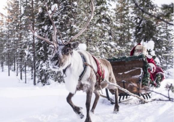 Đến Giáng sinh, ông già Tuyết sẽ bắt đầu cuộc hành trình của mình với cỗ xe do 9 con tuần lộc kéo để mang quà và đồ chơi cho trẻ em khắp thế giới. (Ảnh: VisitFinland)