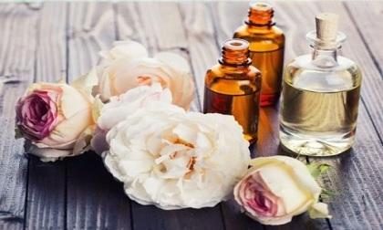 Liệu pháp mùi hương: 3 loại tinh dầu giúp bạn giảm căng thẳng
