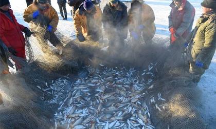 Khách du lịch hào hứng câu cá trên mặt hồ đóng băng ở Mông Cổ