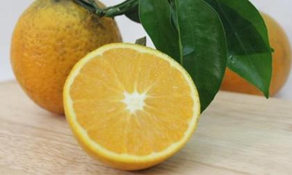 Cách chọn cam ngon ngọt, mọng nước