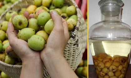 Mang thai 3 tháng ăn táo mèo được không?