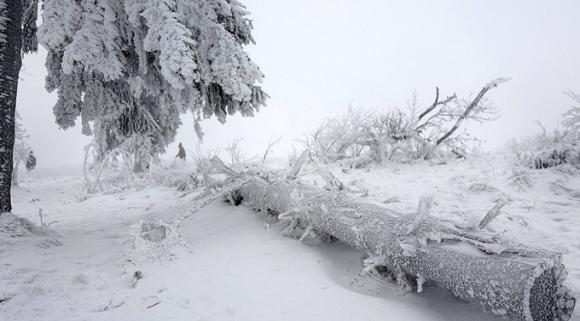 Theo AFP, năm nay Nga đã đón kỳ nghỉ đông lạnh nhất trong 120 năm qua với nhiệt độ thấp xuống dưới -30 độ C ở Moscow và -24 độ C ở Saint Petersburg. (Ảnh: Reuters)