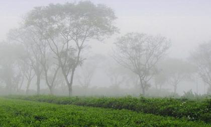 Tin thời tiết ngày 10/1: Bắc Bộ mưa dông, Nam Bộ nắng nóng