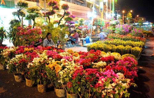 Một góc chợ hoa. Ảnh: Trương Công Khả