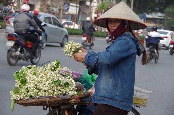 Kiếm chục triệu nhờ những mẹt hoa bưởi dạo - 2