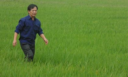 Quang 'Tèo' tiết lộ nguồn gốc khối tài sản kếch xù