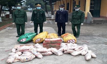 Hải quan Trà Lĩnh (Cao Bằng) phối hợp bắt giữ 300 kg vịt Trung Quốc nhập lậu