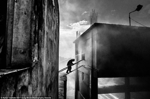 Ảnh đẹp lặng người của cuộc thi ảnh lớn nhất thế giới - 10