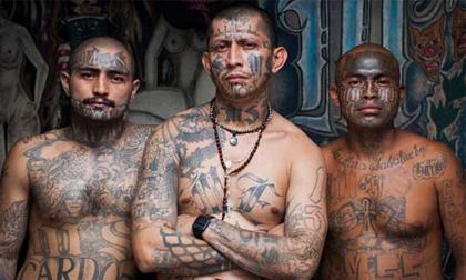 Hé lộ cuộc sống bên trong băng đảng tàn bạo nhất thế giới