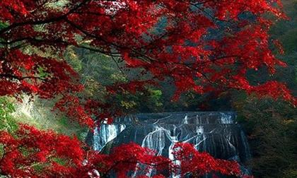Cảnh đẹp đến mức không thể tin nổi là có thực, bạn đã biết bao nhiêu nơi trong số này?