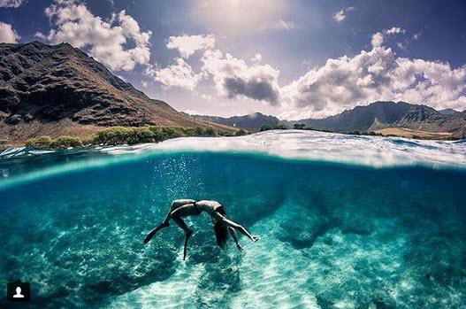 4 địa điểm du khách có thể bơi cùng cá mập - 2