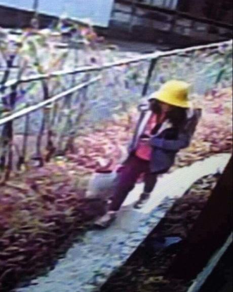 Giả thuyết ban đầu về quá trình sát hại bé gái Việt của nghi phạm - Ảnh 1.