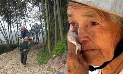Con trai không muốn nuôi mẹ già, định cõng bà lên núi bỏ lại