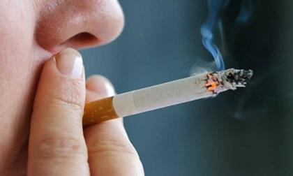 Thuốc lá có tác hại tiêu diệt hệ sinh sản của bạn như thế nào?