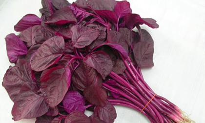 Những tác dụng phụ cần phải biết để tránh khi ăn rau dền