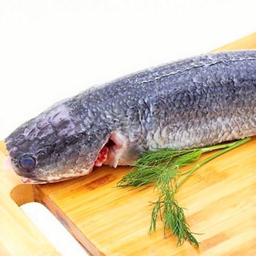 Ngon khó cưỡng, cá lóc nhồi thịt sốt cà chua - 1