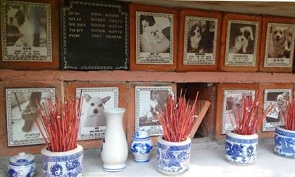 Nghĩa trang chó mèo độc nhất Hà Nội