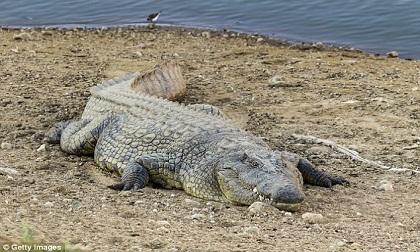 Cô gái Ấn Độ bị cá sấu bắt xuống sông trước mặt gia đình