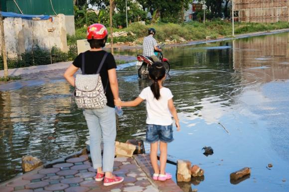 Hà Nội: Ngập úng quanh năm, người dân thả vịt ngay trên đường khu đô thị - Ảnh 1.